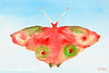 Red + Green Butterfly Painting - Beverly Brown Art Prints