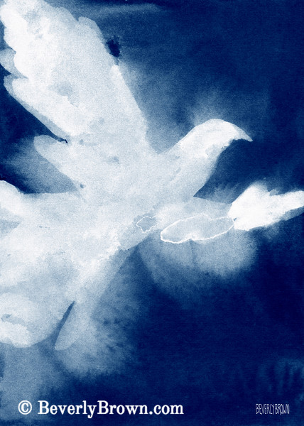White Dove Watercolor Painting - Beverly Brown Art Prints