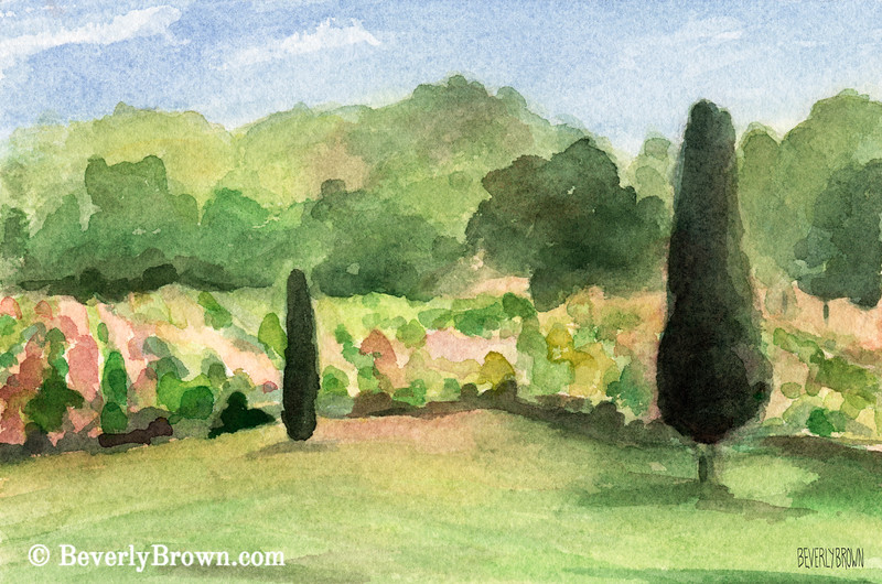 Vinyard in Provence France Painting - Beverly Brown Art Prints