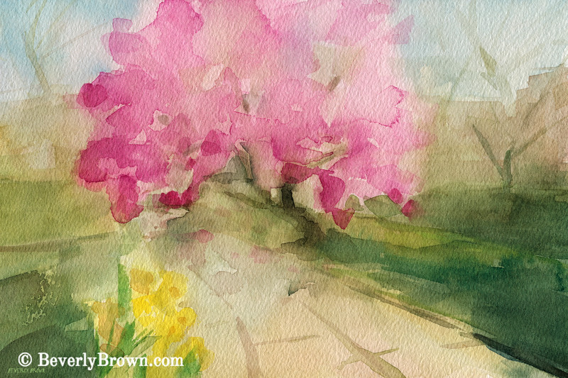 Magnolia Tree Central Park Watercolor Landscape Painting - Beverly Brown Art Prints