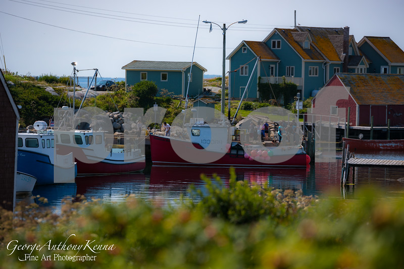 Harbor in Polly's Cove