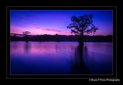 Purple Dawn