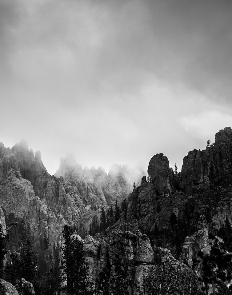 Needles Highway in the Mist