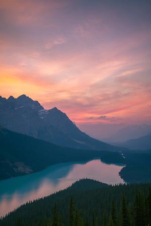 Foxy Sunset