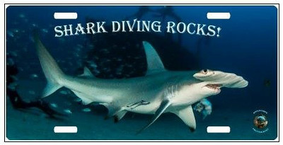 Premium Hammerhead Shark License Plate.