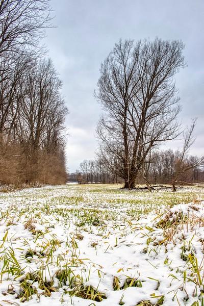 Ohio Winter Scene