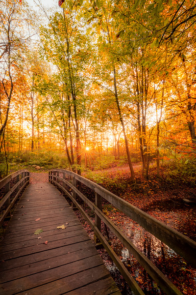 Hubbard Valley Park