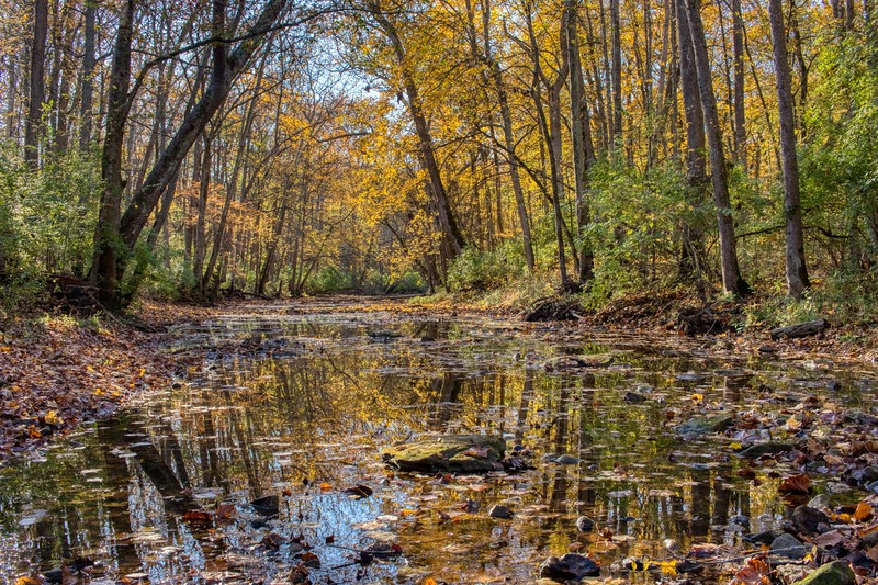 John Bryan State Park, Yellow Springs, Ohio<br /> <br /> © 2019 Ryan L. Taylor Photography. All Rights Reserved.