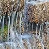 Dogwood Pond Waterfall