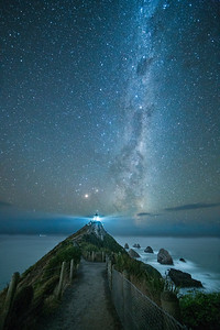 Nugget Point Night