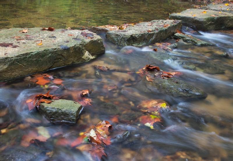 The Sugar Creek