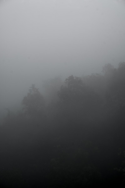 Morning Mist on Doi Suthep Mountain - Chiang Mai, Thailand