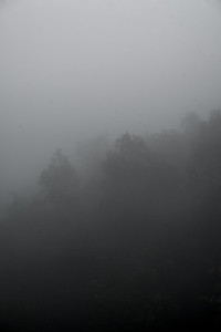 Morning Mist on Doi Suthep Mountain - Chiang Mai, Thailand
