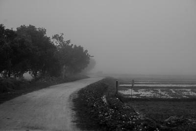 Quiet road in Prao, Thailand