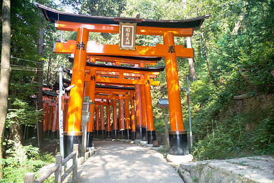 Path of the torii