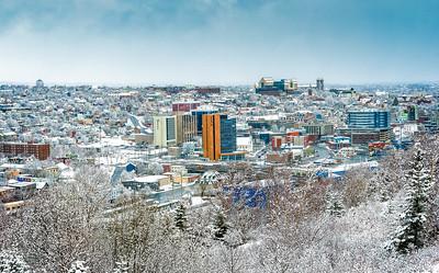 Fresh Snow St. John's, NL