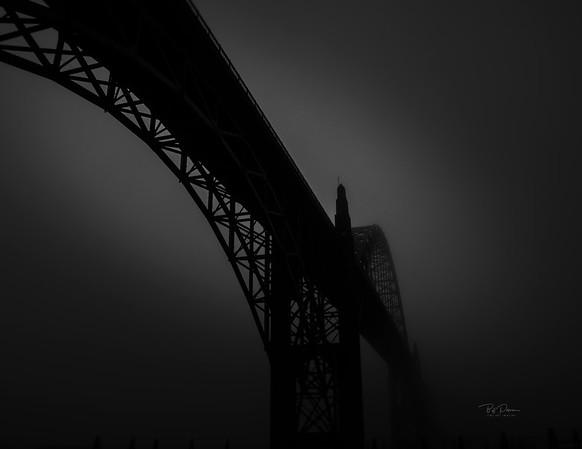 silhouette in fog