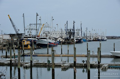 Wildwood Commercial Fishing Fleet