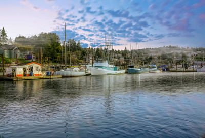 Bayfront Morning 063018