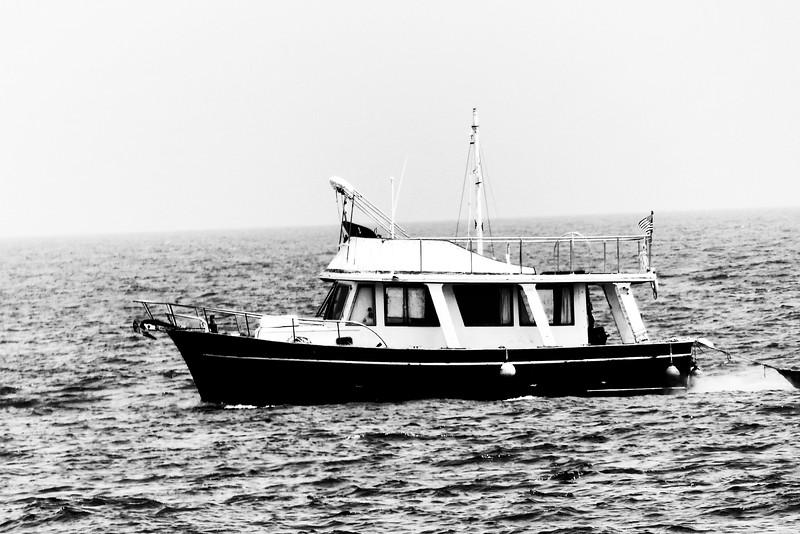 Black boat nik
