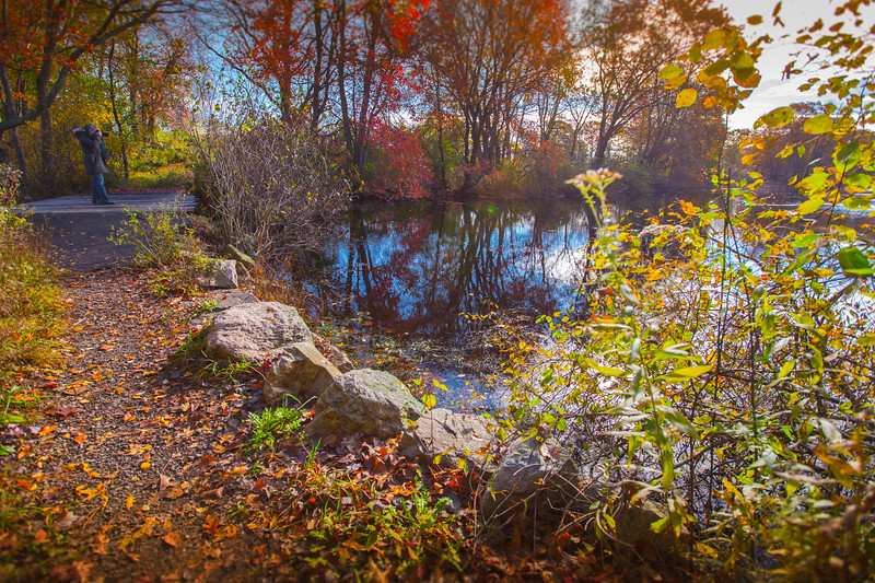 Young's Pond Branford-8238