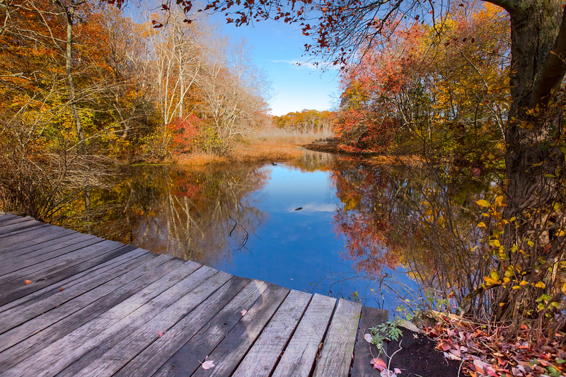 Young's Pond Branford-8279