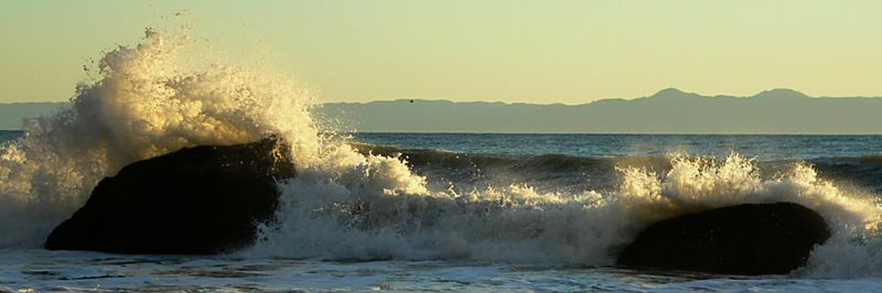 Backlit roller and Catalina Island.