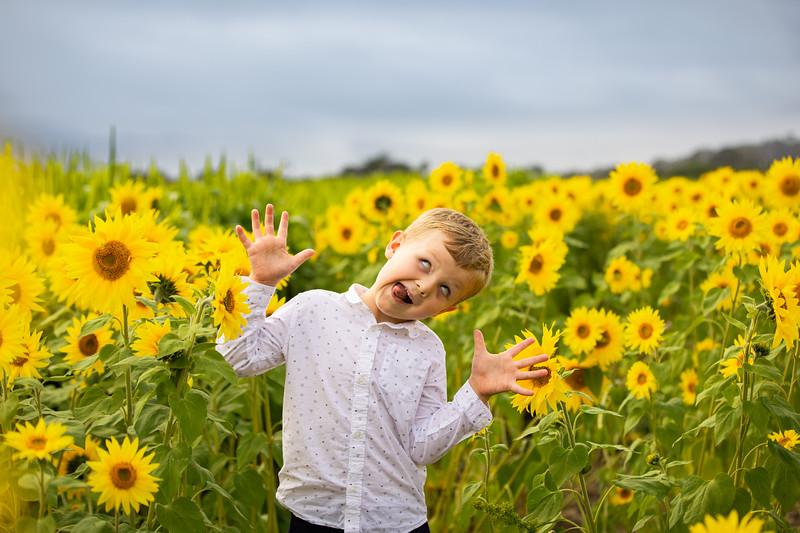 Joyful photography for your beautiful life!