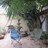 My front patio, Oaxaca, Mexico