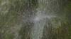 Ein Gedi springs - מעינות עין גדי