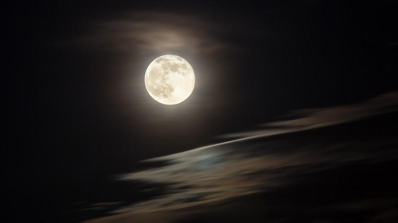 Good Night Blue Moon