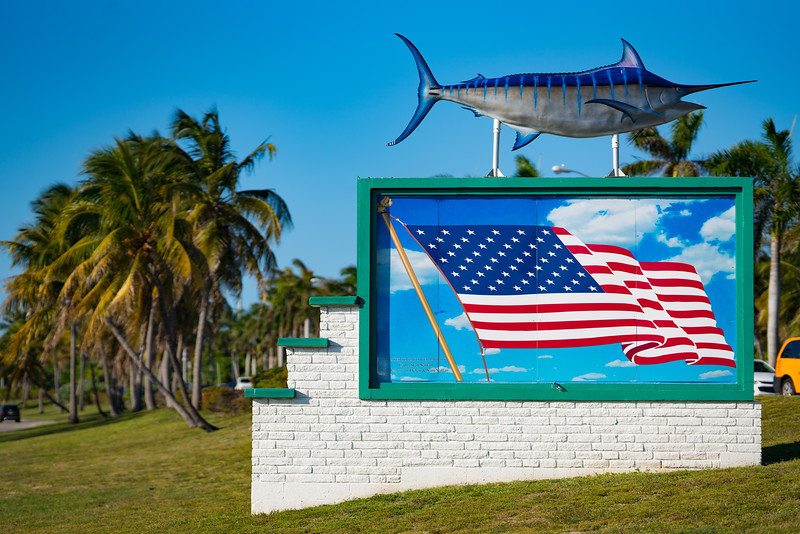 Haulover Park Miami marlin and American flag painting