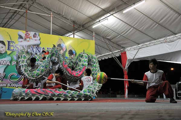 Dragon and Lion Dance 2009