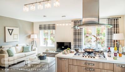 20140611 Cala Homes - Dunmore Oaks 004
