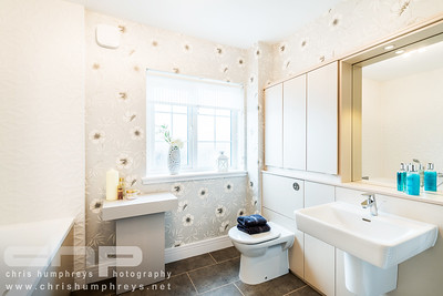 20140911 Cala Homes - Kinnaird Village 006