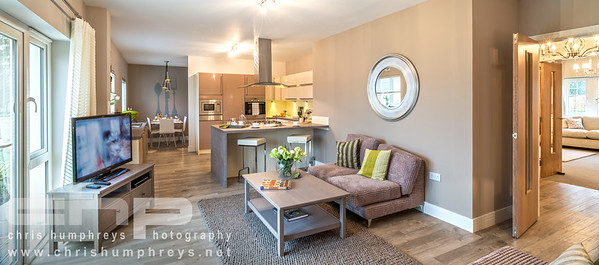 20130221 Cala Homes - Millbank 010