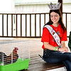 WARREN  DILLAWAY | Star Beacon <br /> Ashtabula County Fair Queen Rachel Jones counts crows during the rooster crowing contest on Thursday morning at the Ashtabula County Fair in Jefferson.