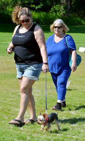 0604 wiener dog races 2
