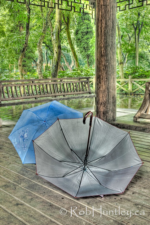 Respite from the Rain 1  - Hangzhou, China