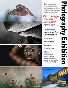 As a member of the Camera Club of Ottawa, I will have an image included in the 2012 Photography Exhibition at the Ottawa Archives. Photography Exhibition by the Camera Club of Ottawa and the RA Photo Club - November 6 - December 27, 2012.