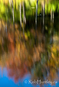 Beaver Pond Reflections, Gatineau Park, Quebec.  © Rob Huntley 2011