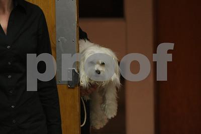 AnnieJr 11-15-2009 1-58-20 PM