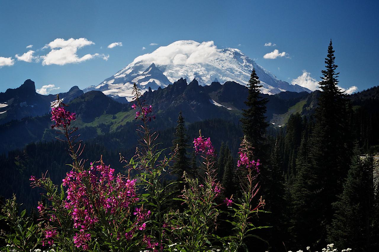 Mount Rainier afternoon