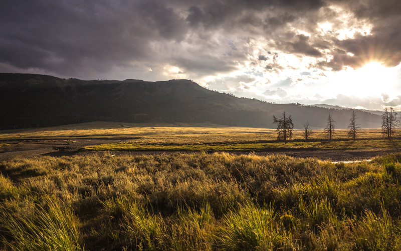 Lamar Valley After Rainshower
