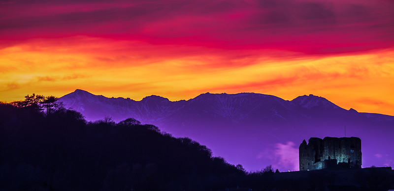 Purple Dusk