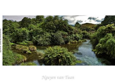 Hamurana Springs New Zealand - January 2006