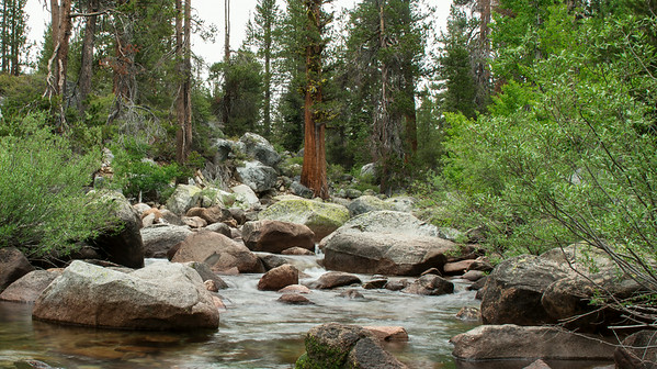 Yosemite Creek near Tuolomne Meadows