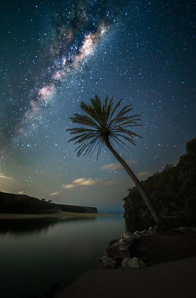 Reach Into the Stars