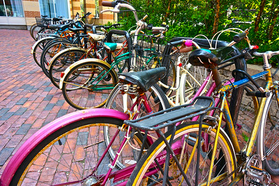 I particularly like the purple bike in this picture, as it stands out from all the rest. It is what makes this photograph. This was taken in Toronto, ON, Canada in July, 2014.