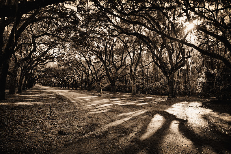 Wormsloe Road